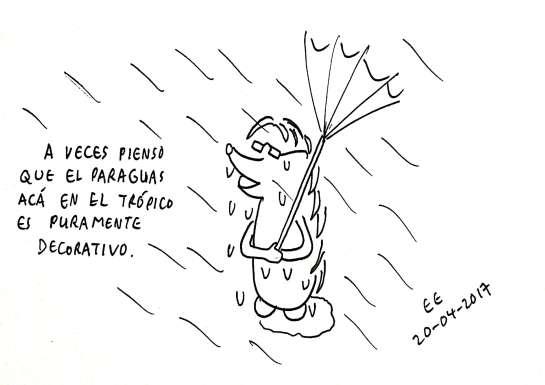 Mochito y el paraguas en el trópico